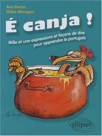 E canja ! C'est du bouillon de poulet ! : Mille et une expressions et façons de dire pour apprendre le portugais