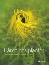 L'Ame des Plantes : Petites Curiosites Botaniques