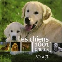 Les chiens : 1001 Photos