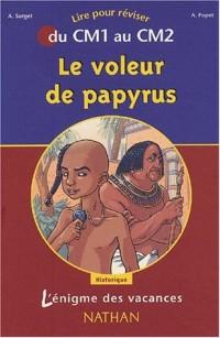 L'Énigme des vacances : Le Voleur de papyrus, lire pour réviser du CM1 au CM2