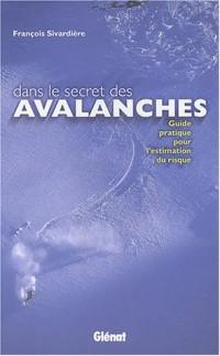 Dans le secret des avalanches : Guide pratique pour l'estimation du risque