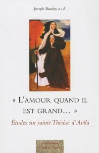L'amour quand il est grand... : Etudes sur sainte Thérèse d'Avila
