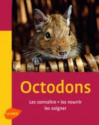 Octodons : Les connaître, les nourrir, les soigner