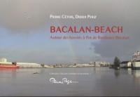 Bacalan-Beach : Autour des bassins à flot de Bordeaux-Bacalan
