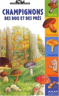 Champignons des bois et des prés