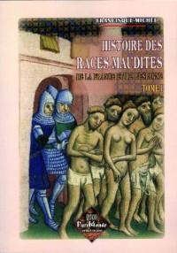 Histoire des races maudites de la France et de l'Espagne (tome 1)