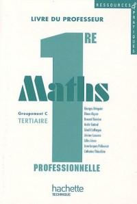 Maths 1e professionnelle groupement C Tertiaire, Ressources et pratiques (1Cédérom)