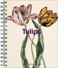 The Tulips Diary (en anglais)