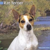 Calandrier 2012 - Terrier de rat