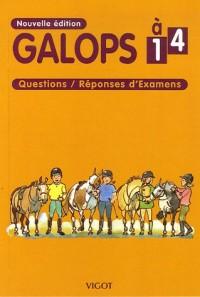 Galops 1 à 4 : Questions/Réponses d'Examens