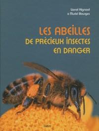 Les abeilles, de précieux insectes en danger