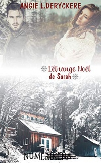 L'étrange Noël de Sarah: Dirty Loft, T5