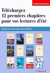 EXTRAITS - 12 romans pour vos lectures d'été