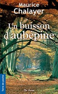 Un buisson d'aubépine (Terre de poche)  width=